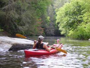Cascade paddler