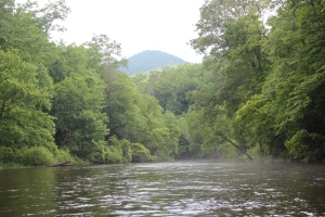 Nantahala Headwaters