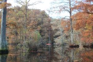 Trussum Pond